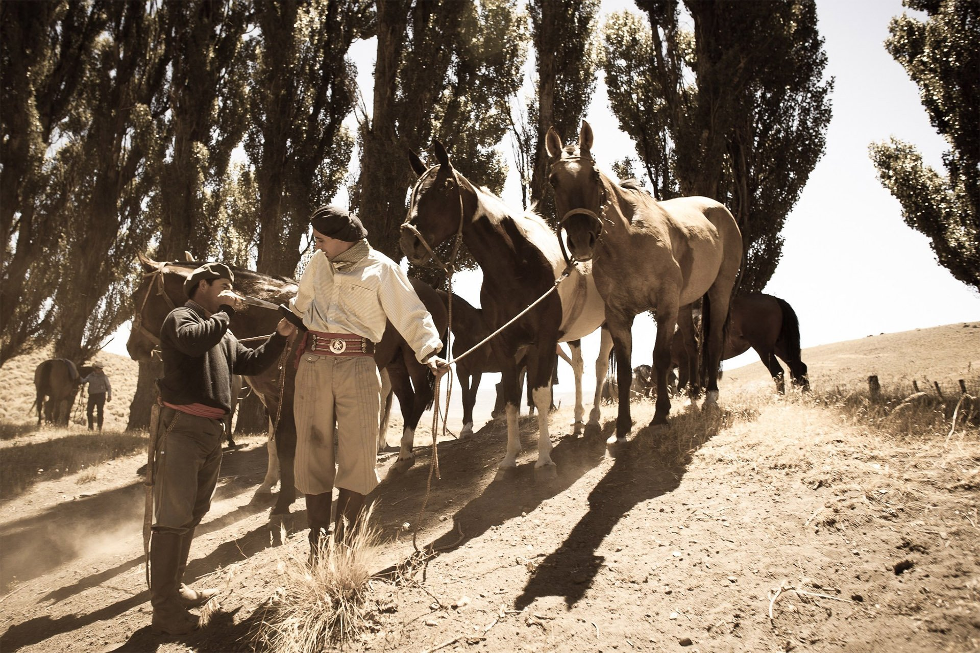 roque-bags_home-travellog_gaucho-with-horse-patagonia-sepia-lucindapaxton