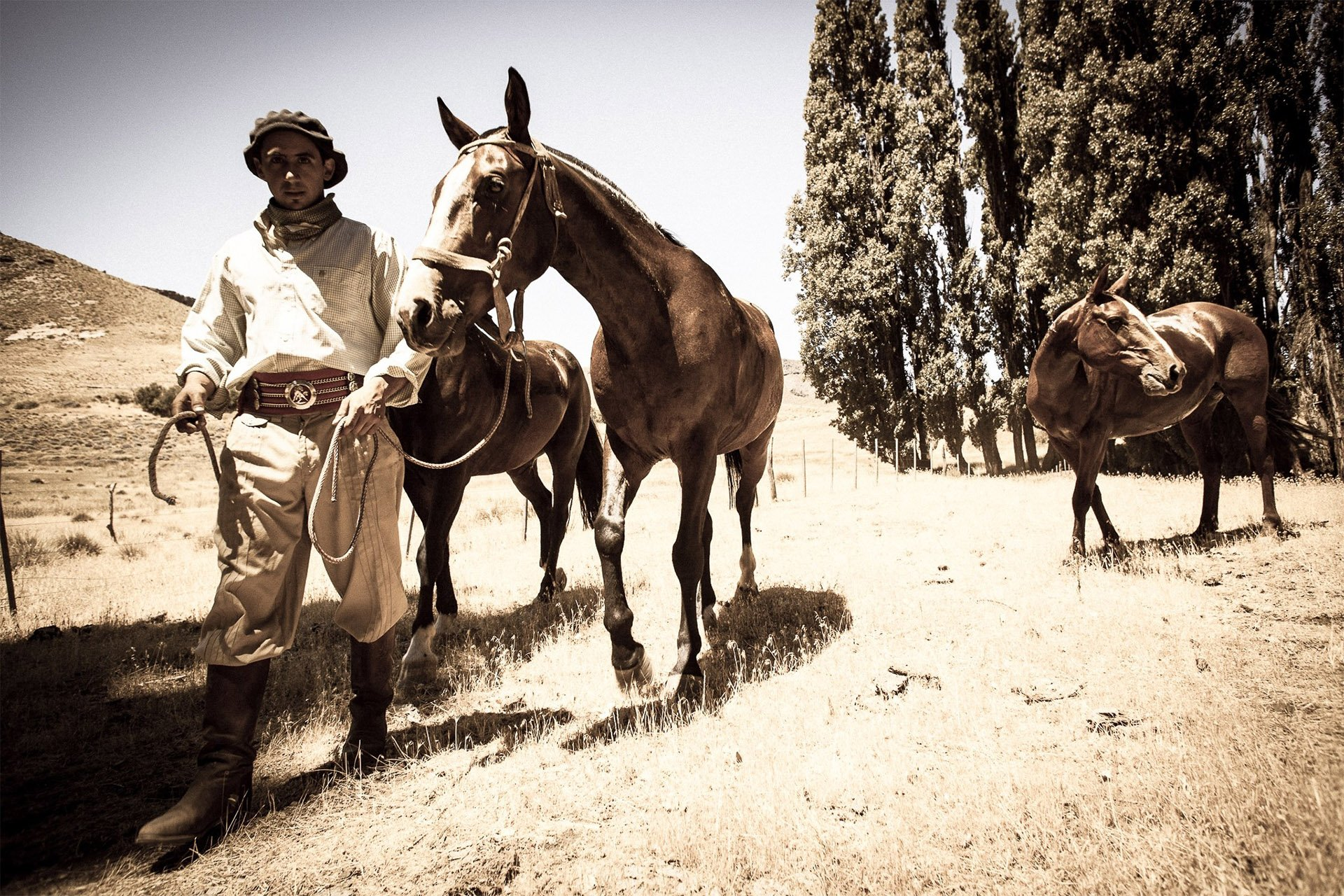 roque-bags_home-travellog_lucinda-paxton-sepia-gaucho-horse